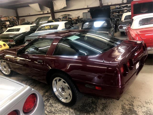 1993 Chevrolet Corvette (CC-1525166) for sale in Greenville, North Carolina