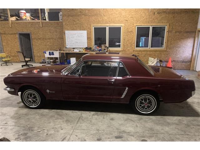 1965 Ford Mustang (CC-1520561) for sale in Berrien Center, Michigan
