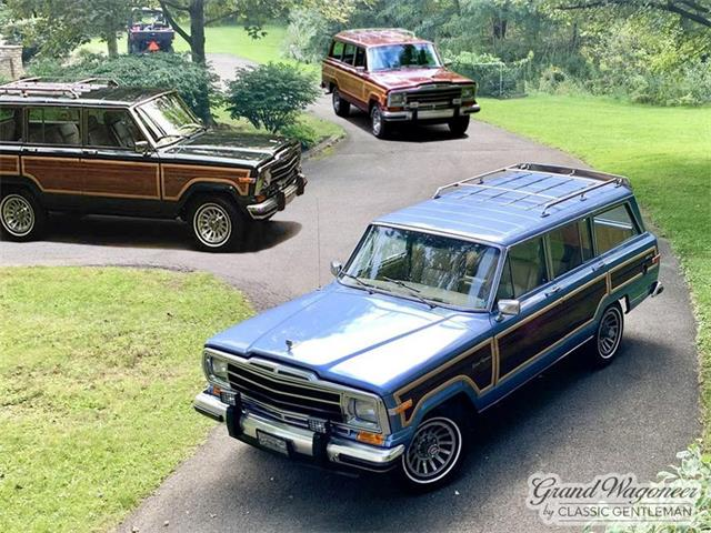 1988 Jeep Grand Wagoneer (CC-1525611) for sale in Bemus Point , New York