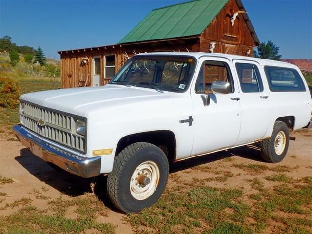 1982 Chevrolet Suburban (CC-1525974) for sale in Cadillac, Michigan
