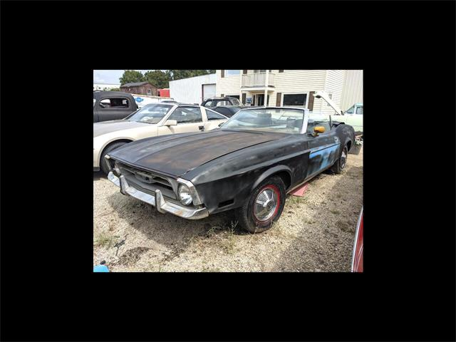 1971 Ford Mustang (CC-1526537) for sale in Gray Court, South Carolina