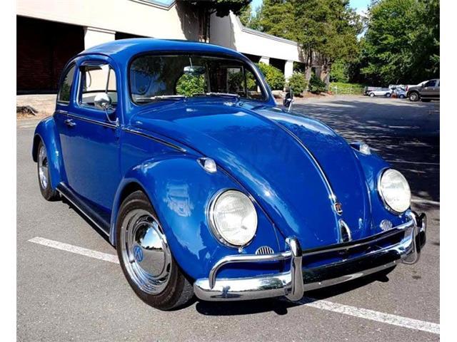 1960 Volkswagen Beetle (CC-1526553) for sale in Arlington, Texas