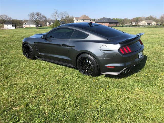 2020 Ford Mustang Shelby GT350 (CC-1520694) for sale in Bloomington, Indiana