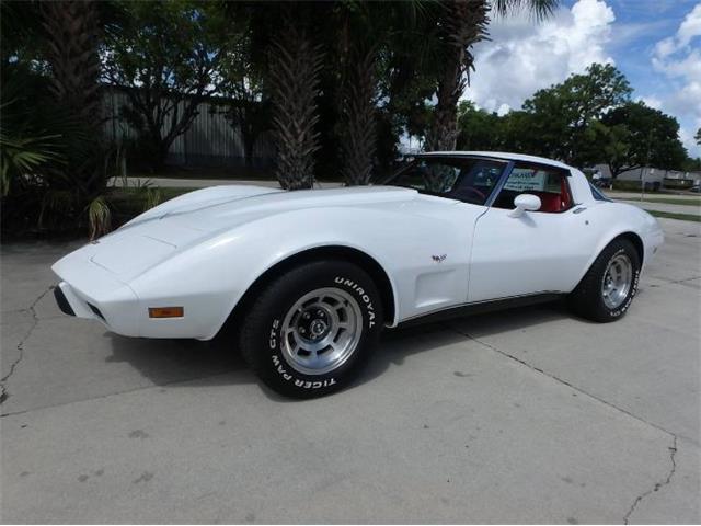1979 Chevrolet Corvette (CC-1527217) for sale in Cadillac, Michigan