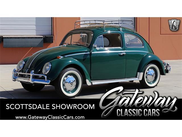 1964 Volkswagen Beetle (CC-1527488) for sale in O'Fallon, Illinois