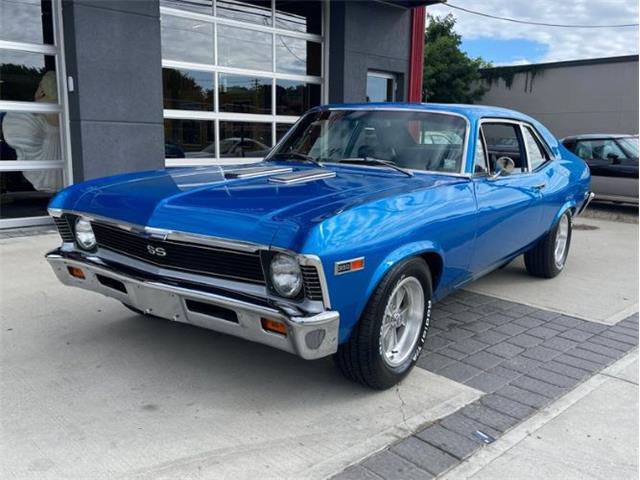 1969 Chevrolet Nova (CC-1528137) for sale in Cadillac, Michigan
