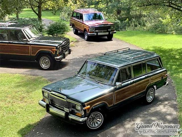 1985 Jeep Grand Wagoneer (CC-1528435) for sale in Bemus Point , New York