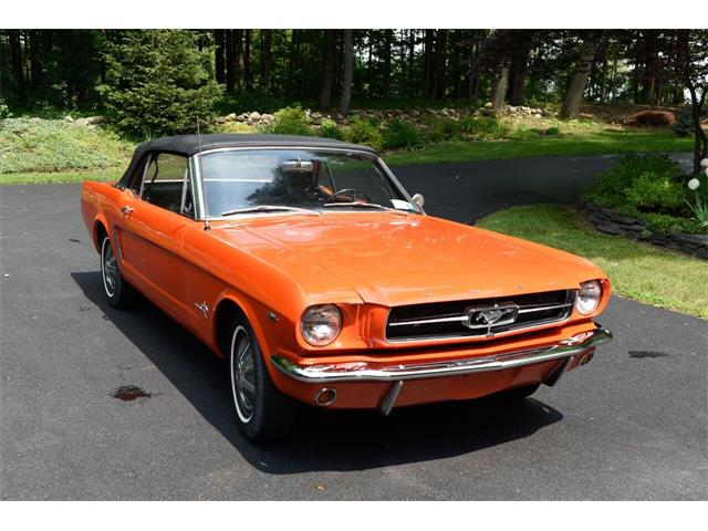 1965 Ford Mustang (CC-1528990) for sale in Hilton, New York