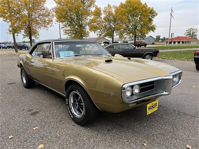 1967 Pontiac Firebird (CC-1529129) for sale in Webster, South Dakota