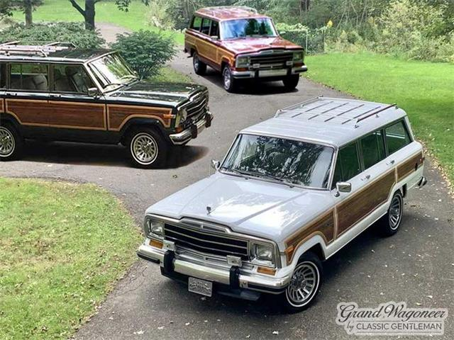 1988 Jeep Grand Wagoneer (CC-1529606) for sale in Bemus Point, New York