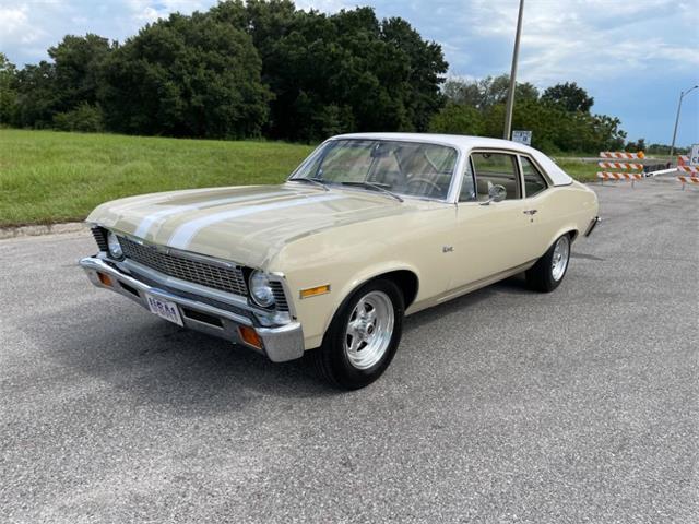 1971 Chevrolet Nova (CC-1529688) for sale in Winter Garden, Florida