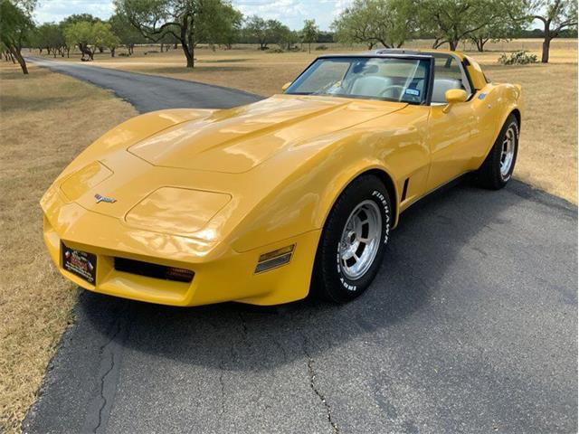 1980 Chevrolet Corvette (CC-1529701) for sale in Fredericksburg, Texas