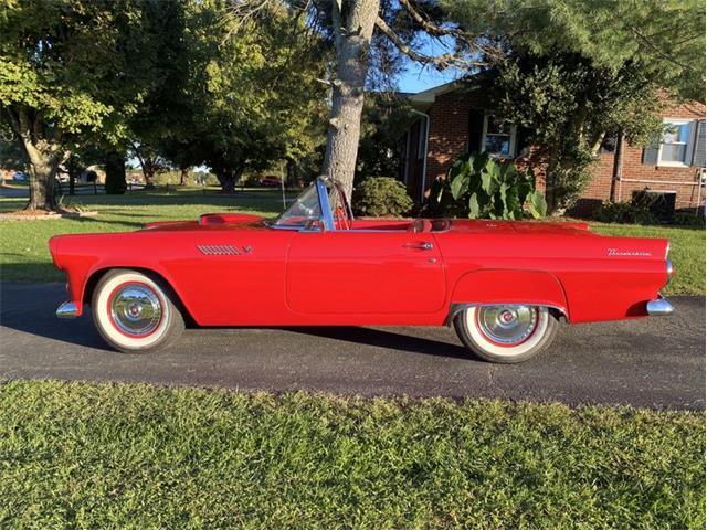 1955 Ford Thunderbird (CC-1530105) for sale in Greensboro, North Carolina