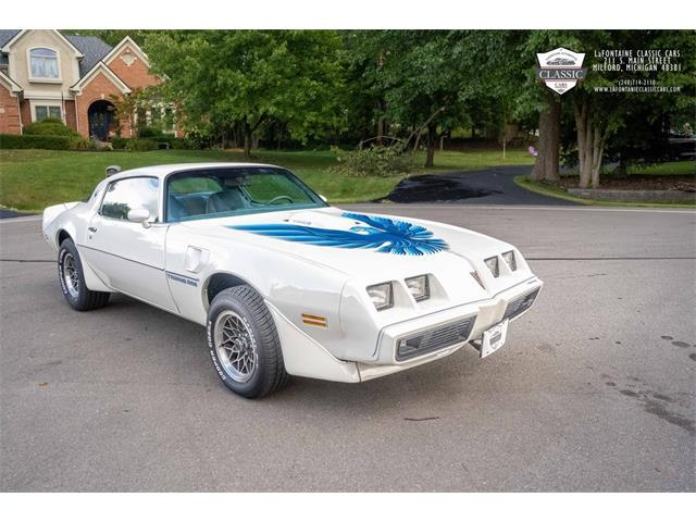 1979 Pontiac Firebird (CC-1531124) for sale in Milford, Michigan