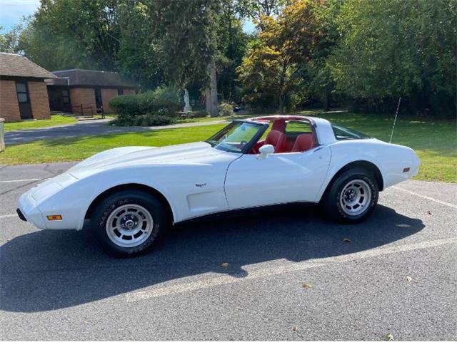 1979 Chevrolet Corvette (CC-1532195) for sale in Cadillac, Michigan
