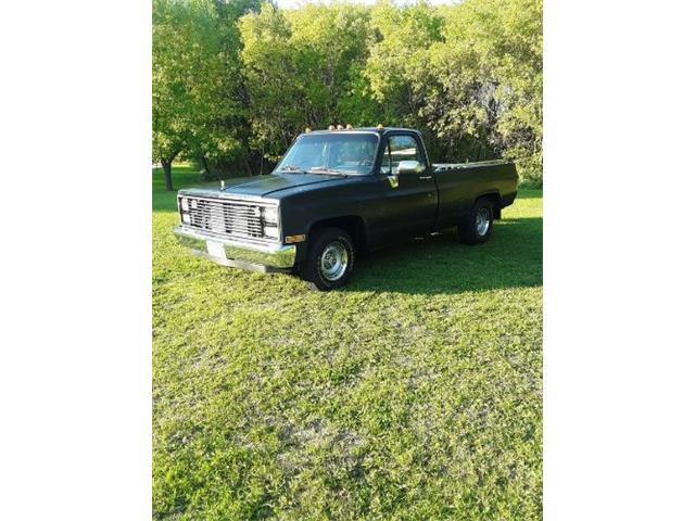 1982 Chevrolet C10 (CC-1532352) for sale in Cadillac, Michigan