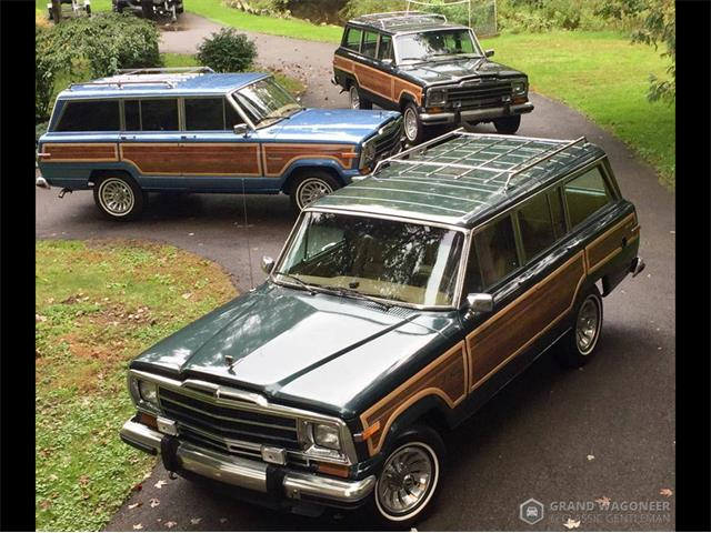 1989 Jeep Grand Wagoneer (CC-1533179) for sale in BEMUS POINT, New York