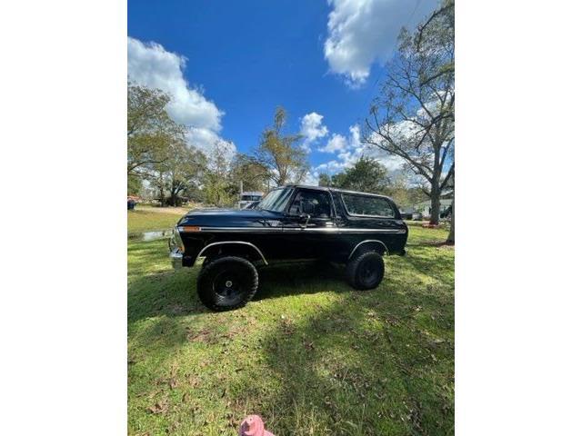 1979 Ford Bronco (CC-1533282) for sale in Punta Gorda, Florida