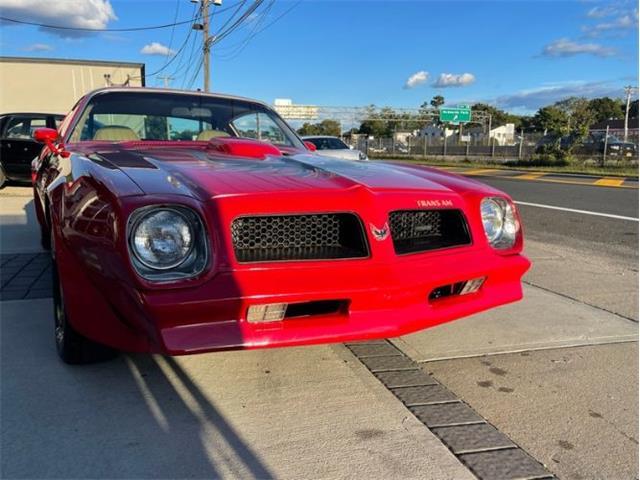 1976 Pontiac Firebird Trans Am (CC-1530528) for sale in Cadillac, Michigan