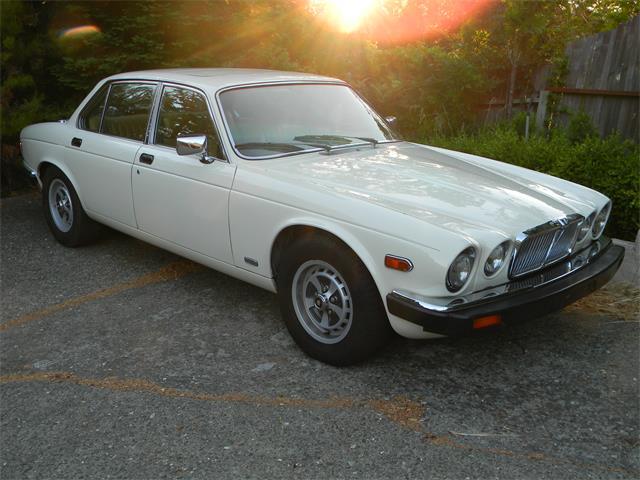 1987 Jaguar XJ6 (CC-549798) for sale in San Rafael, California