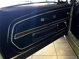 1968 Shelby GT500 (CC-593756) for sale in Greenville, North Carolina