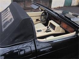 1986 TVR 280i (CC-612338) for sale in Stratford, Connecticut