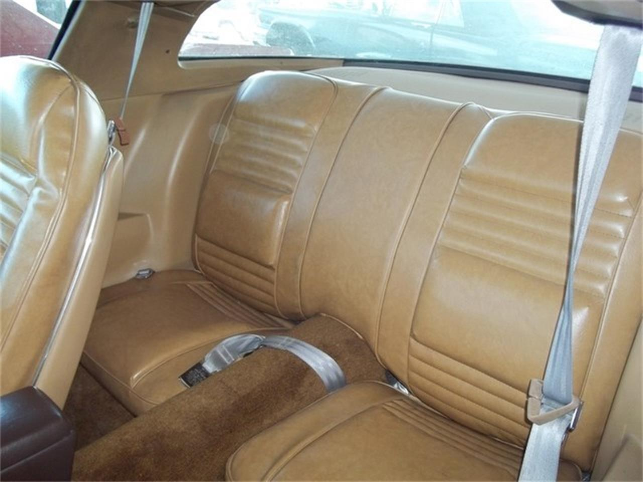 1981 Pontiac Firebird (CC-691093) for sale in Liberty Hill, Texas