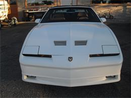 1989 Pontiac Turbo Trans Am Pace Car (CC-701065) for sale in Whitefish, Ontario