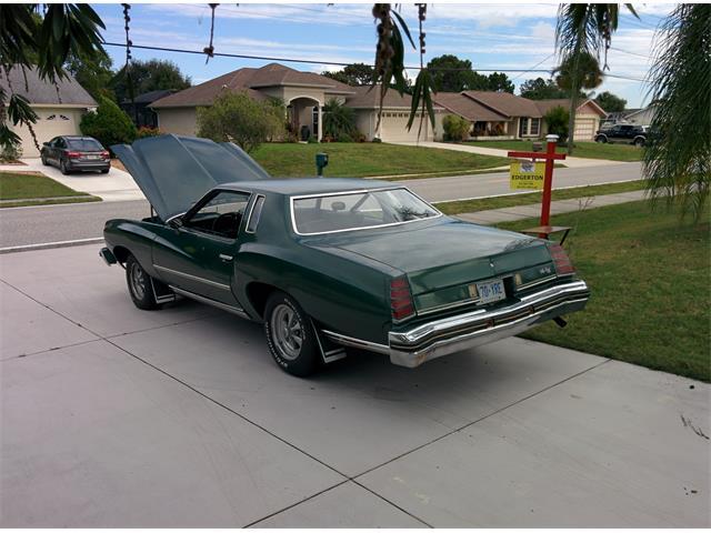 1975 Chevrolet Monte Carlo Landau (CC-738641) for sale in Kinsville, Ontario