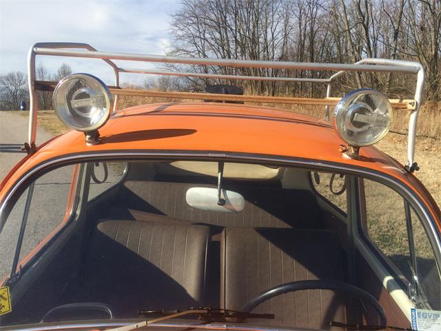 1966 Volkswagen Beetle (CC-760204) for sale in St. Louis, Missouri