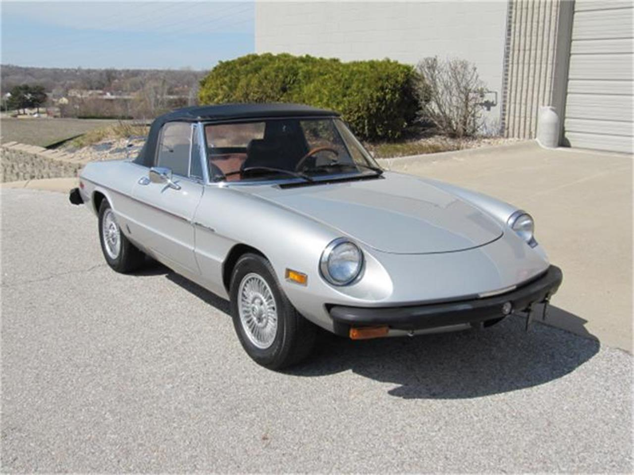 1981 Alfa Romeo 2000 Spider Veloce (CC-794266) for sale in Omaha, Nebraska
