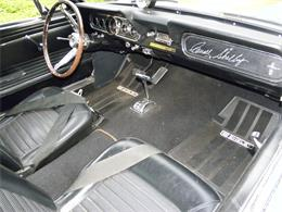 1966 Shelby Mustang (CC-852603) for sale in Middlebury, Connecticut
