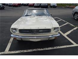 1965 Ford Mustang (CC-885195) for sale in Auburn, Massachusetts