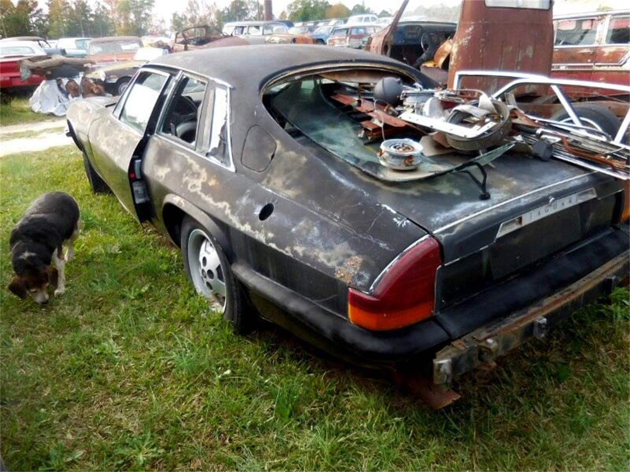 1978 Jaguar XJ (CC-888648) for sale in Gray Court, South Carolina