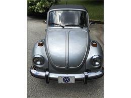 1979 Volkswagen Beetle (CC-889186) for sale in Bryn Mawr, Pennsylvania