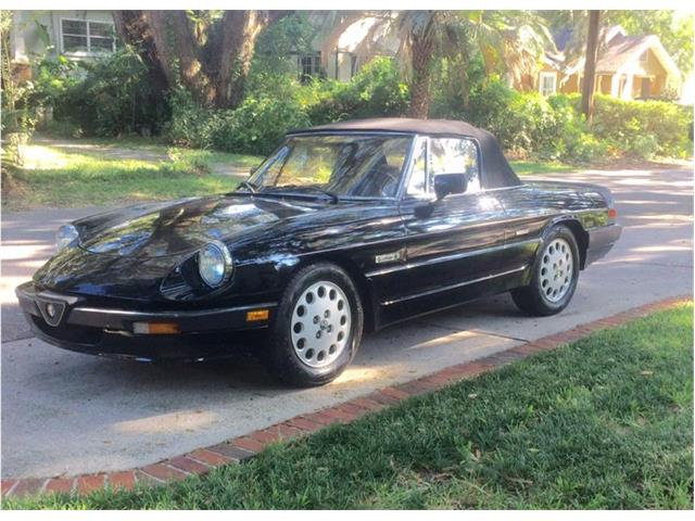 1988 Alfa Romeo Spider Quadrifoglio (CC-903727) for sale in Jacksonville, Florida