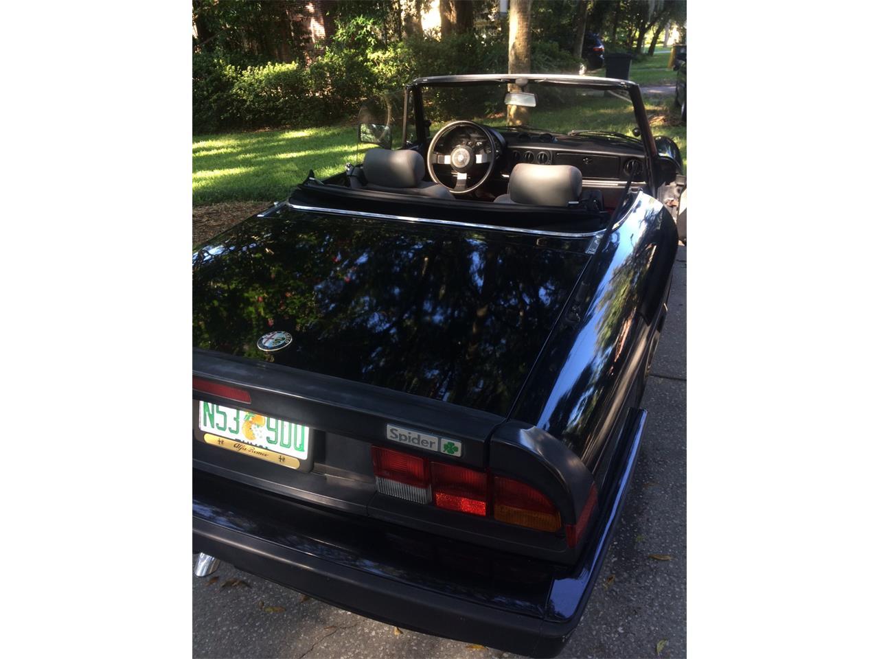 1988 Alfa Romeo Spider Quadrifoglio (CC-903727) for sale in Jacksonville, Florida