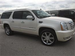 2011 Cadillac Escalade (CC-929347) for sale in St Louis, Missouri