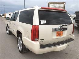 2011 Cadillac Escalade (CC-929347) for sale in St Louis, Missouri