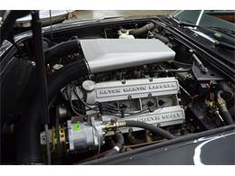 1985 Aston Martin Volante (CC-949354) for sale in Huntington Station, New York