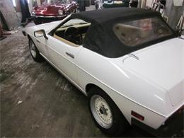 1984 TVR 280i (CC-959863) for sale in Stratford, Connecticut