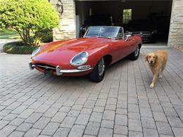1964 Jaguar E-Type (CC-964143) for sale in Tampa, Florida
