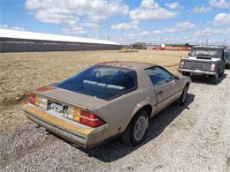 1984 Chevrolet Camaro (CC-969767) for sale in Staunton, Illinois