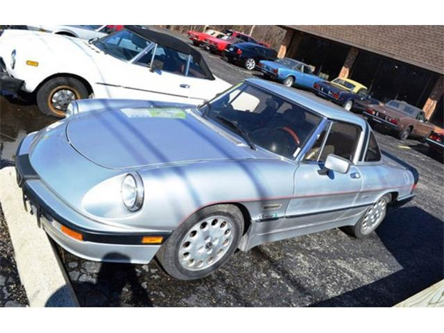 1987 Alfa Romeo Quadrifoglio (CC-971608) for sale in Barrington, Illinois