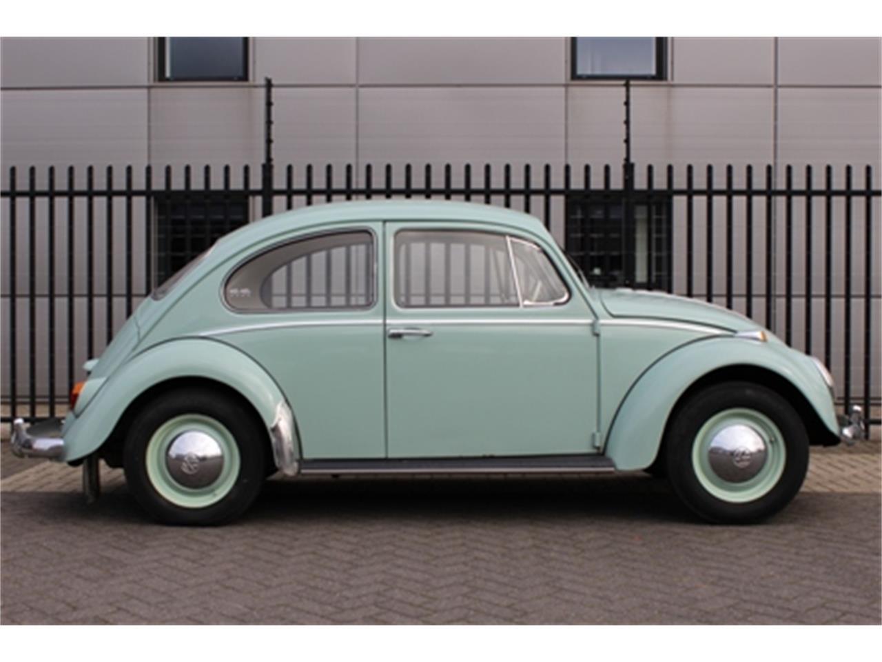 1965 Volkswagen Beetle (CC-972389) for sale in Waalwijk, Noord Brabant