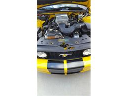 2006 Ford Mustang GT (CC-973922) for sale in Land O' Lakes, Florida