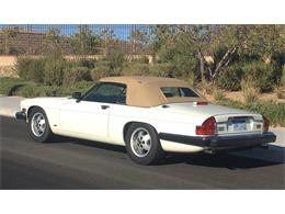 1988 Jaguar XJS (CC-978643) for sale in Las Vegas, Nevada